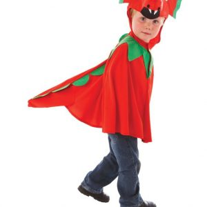 dragon child costume