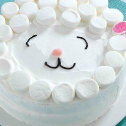 sheepish kids party cake